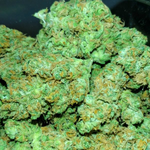 Brains Damage Kush