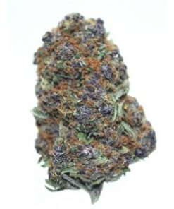 Purple Urkle strain