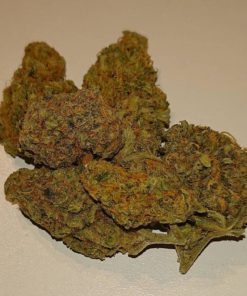 Buy Dirty Girl strain